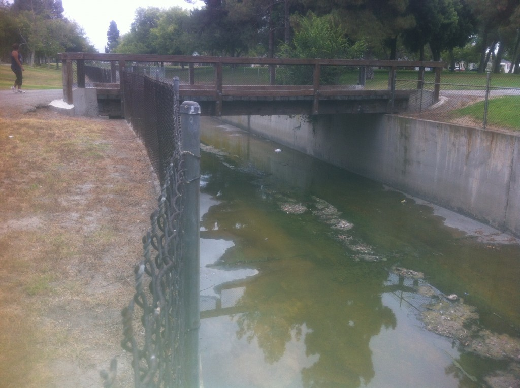 storm canal south of where an eyewitness in Lakewood, California, saw a ropen