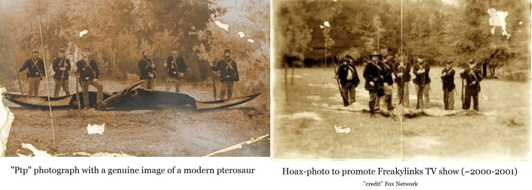comparing two photographs